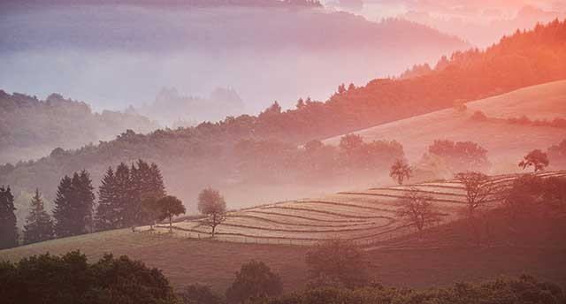 Picture a landscape in Luxembourg at sunrise