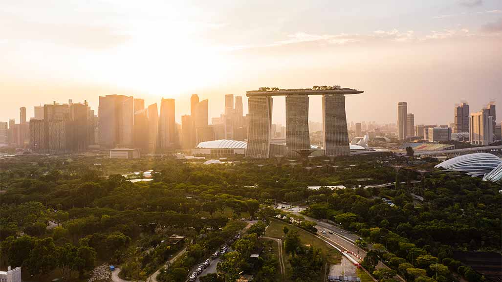 aerial view of singapore and a forest at day time