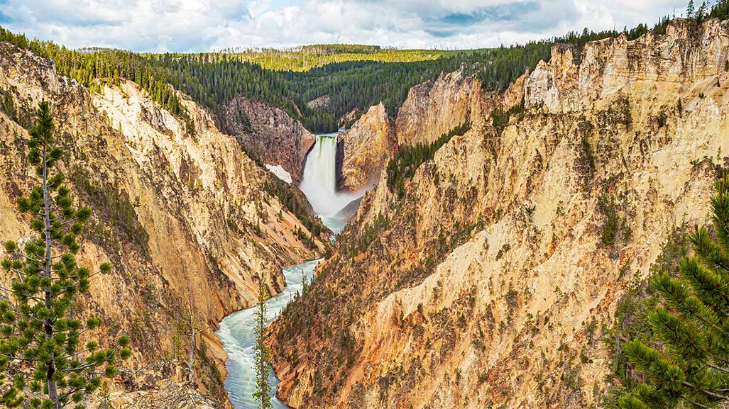 Yellowstone national park in the USA